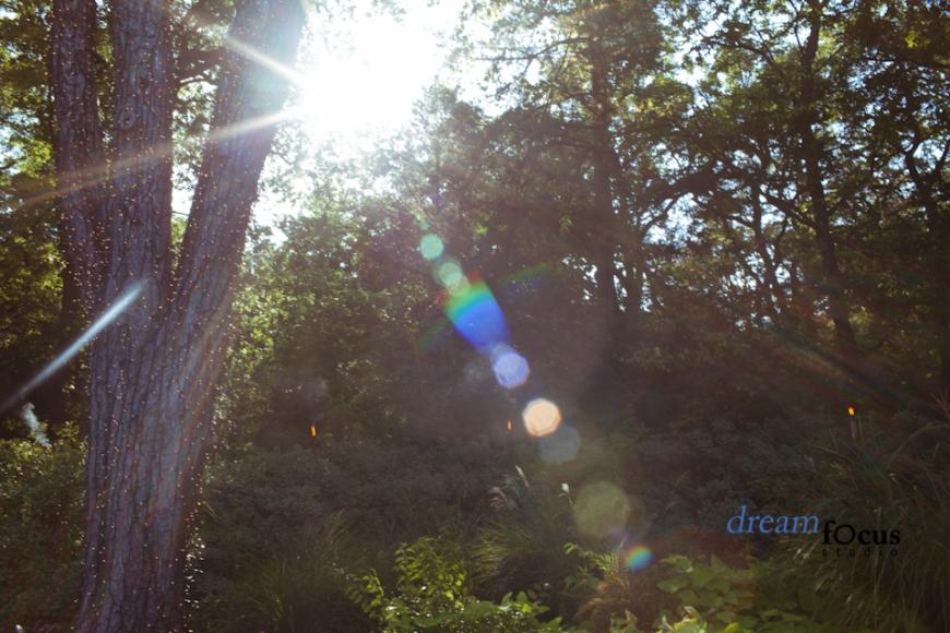 Enchanted Memories-12