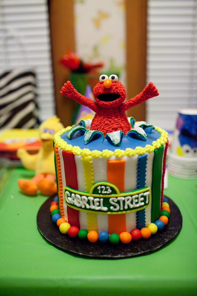 Sesame Street Comes to Our House Dream Focus Studio Dallas