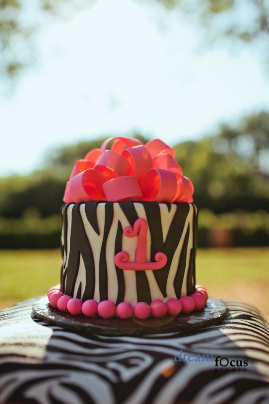 zebra smash cake