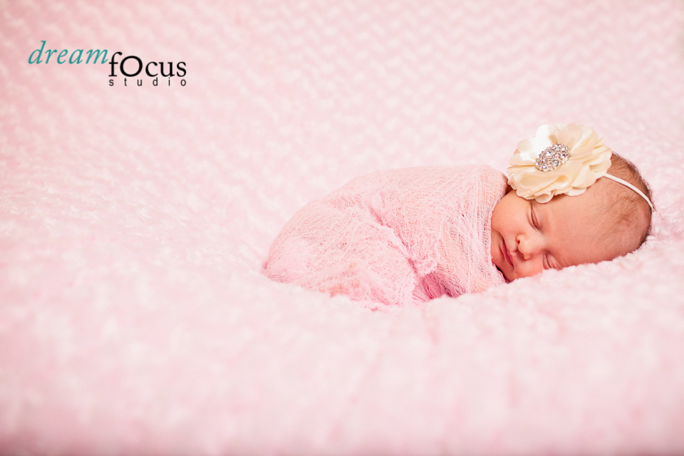 newborn photography carrollton
